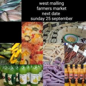 west malling september 2016 reminder